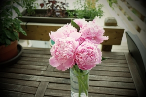 Life-of-Pix-free-stock-photos-bouquet-pink-flower-table-julien-sister